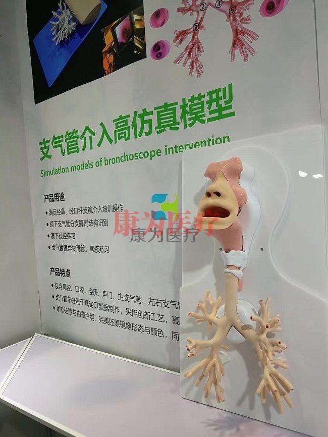 支气管镜介入高仿真模型,支气管镜介入模拟器