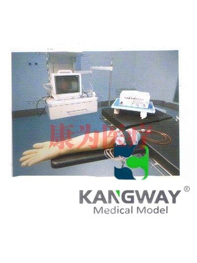 """""""康为医疗""""高级电动脉搏式手臂动脉及静脉穿刺练习模型(技术参数)"""