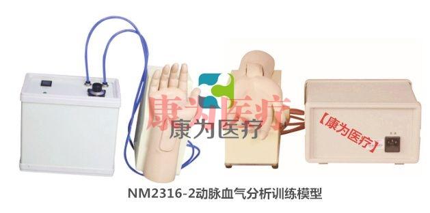 【康为医疗】动脉血气分析训练模型