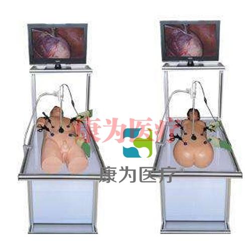 """""""康为医疗""""腹腔镜手术技能训练人体模型"""