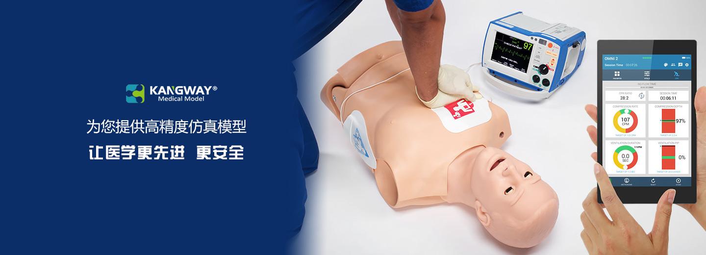 郑州心肺复苏模型