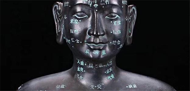 昆山中医教学仪器模型Tcm