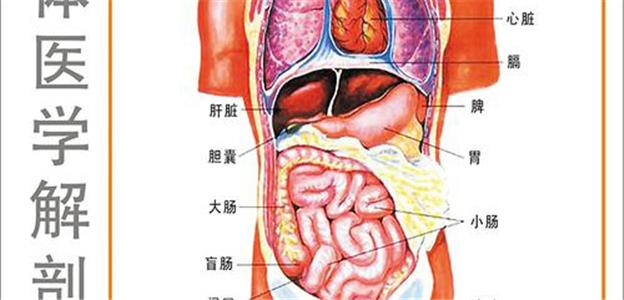 江苏医学教学彩色挂图、软件、光盘